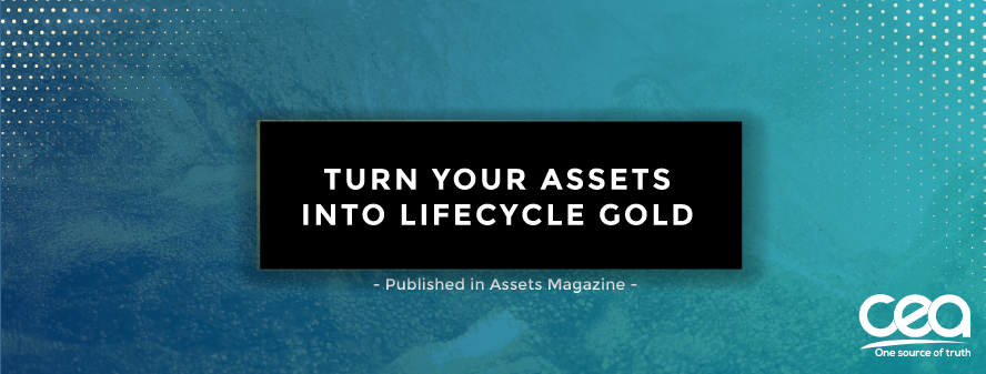Turn asset data into lifecycle gold!